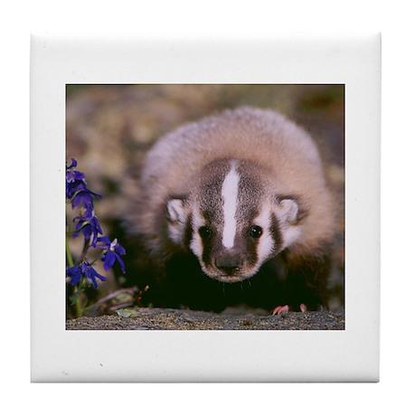 Baby Badger Tile Coaster