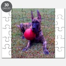 Cute Brindle great danes Puzzle
