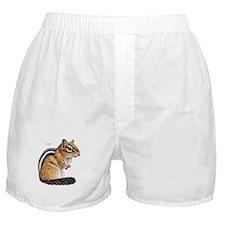Chipmunk Animal Boxer Shorts
