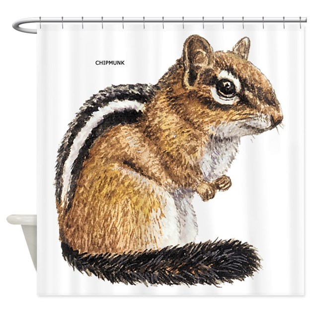 Chipmunk Animal Shower Curtain By Animalartwork