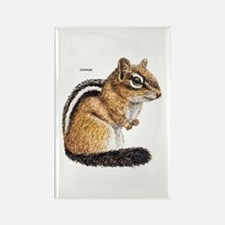 Chipmunk Animal Rectangle Magnet