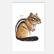 Chipmunk Animal Postcards (Package of 8)