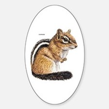 Chipmunk Animal Decal
