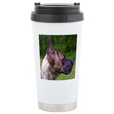 Head study Travel Mug