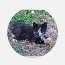 Cat / Kitten Ornament (Round)