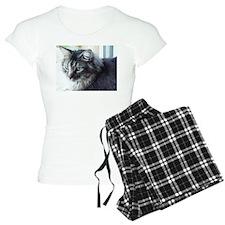 Cat / Kitten Pajamas