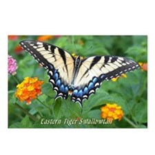 Butterfly Postcards<br>Tiger Swallowtail