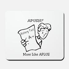APUSH Mousepad
