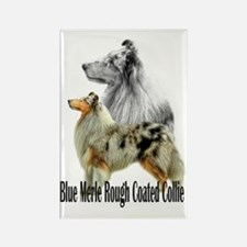 Cute Blue merle collies Rectangle Magnet