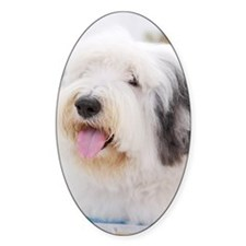 Close-up of Old English Sheepdog Decal