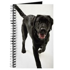 Black Labrador retriever Journal