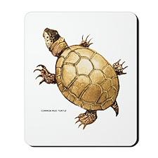 Common Mud Turtle Mousepad