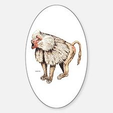 Baboon Ape Monkey Sticker (Oval)