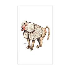 Baboon Ape Monkey Decal