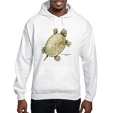Northern Diamondback Turtle Hoodie