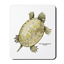 Northern Diamondback Turtle Mousepad