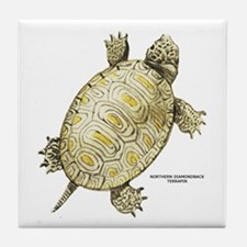 Northern Diamondback Turtle Tile Coaster
