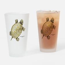 Northern Diamondback Turtle Drinking Glass