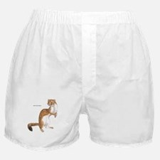 Long-Tailed Weasel Boxer Shorts