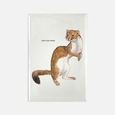 Long-Tailed Weasel Rectangle Magnet