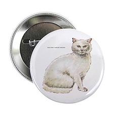 "Odd-Eyed Turkish Angora Cat 2.25"" Button"