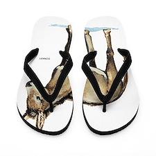 Donkey Animal Flip Flops