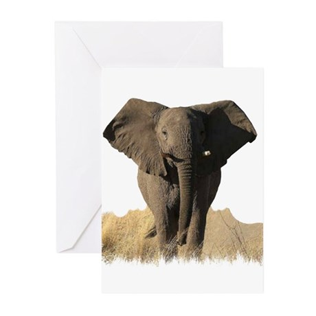 THE ELEPHANT Greeting Cards (Pk of 10)
