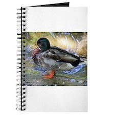 Mallard Duck Journal