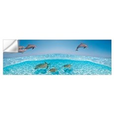 Bottlenose Dolphin Jumping While Turtles Swimming  Wall Decal