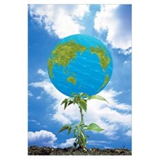 Globe Floating Over Plant with Cloudy Sky in Backg Poster