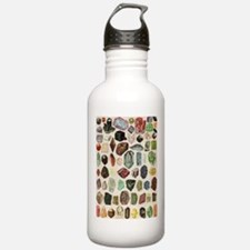 Vintage Geology Rocks Gemstones Water Bottle