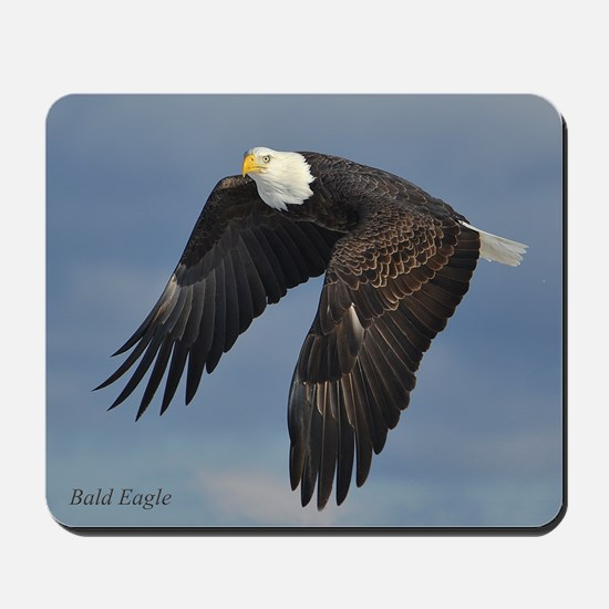 Bald Eagle Mousepad