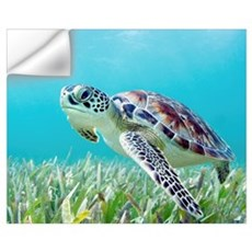 Hawaii, Green Sea Turtle (Chelonia Mydas) An Endan Wall Decal