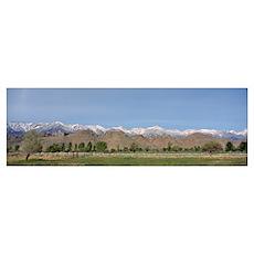 Field, Alabama Hills, Mt Whitney, Californian Sier Poster