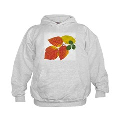 Autumn Leaves in Boston by Khoncepts Hoodie