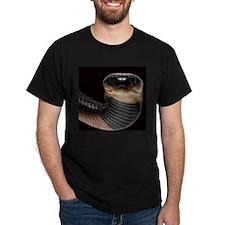 Reptiles T-Shirt Red Spitting Cobra Snake