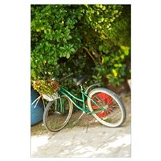 French Polynesia, Tahiti, Maupiti, Bicycle Parked  Poster