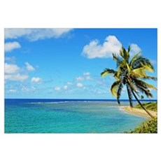 Fiji, Blue And Turquoise Ocean With Palm Tree And Framed Print
