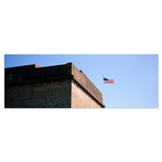 Confederate Fort Pulaski National Monument, Savann Poster