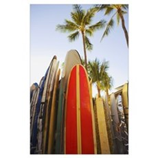 Hawaii, Oahu, Waikiki,Colorful Surfboards In Surfb Poster