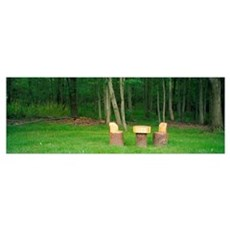log table and chairs in a forest, Twinsburg, Summi Poster