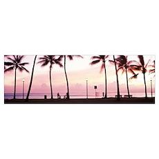 Palm trees on the beach, Waikiki, Honolulu, Oahu, Poster