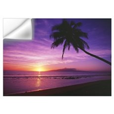 Hawaii, Maui, Olowalu, Palm Tree Silhouette At Sun Wall Decal