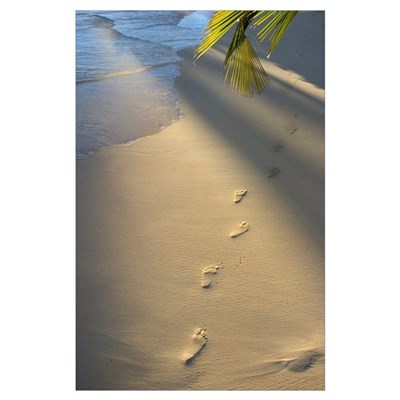 Footprints In Sand At Water's Edge, Soft Warm Gold Poster