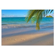 Hawaii, Oahu, Footprints In The Sand At Lanikai Be Canvas Art