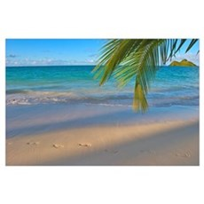 Hawaii, Oahu, Footprints In The Sand At Lanikai Be Poster