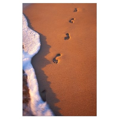 Close-Up Of Footprints In The Sand Along Shoreline Poster