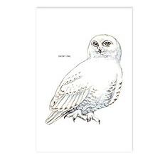 Snowy Owl Bird Postcards (Package of 8)