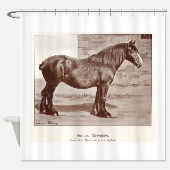 Clydesdale Drawing Shower Curtain