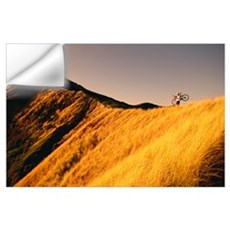 Mountain Biker On Ridge With Bike On Shoulder, Gol Wall Decal